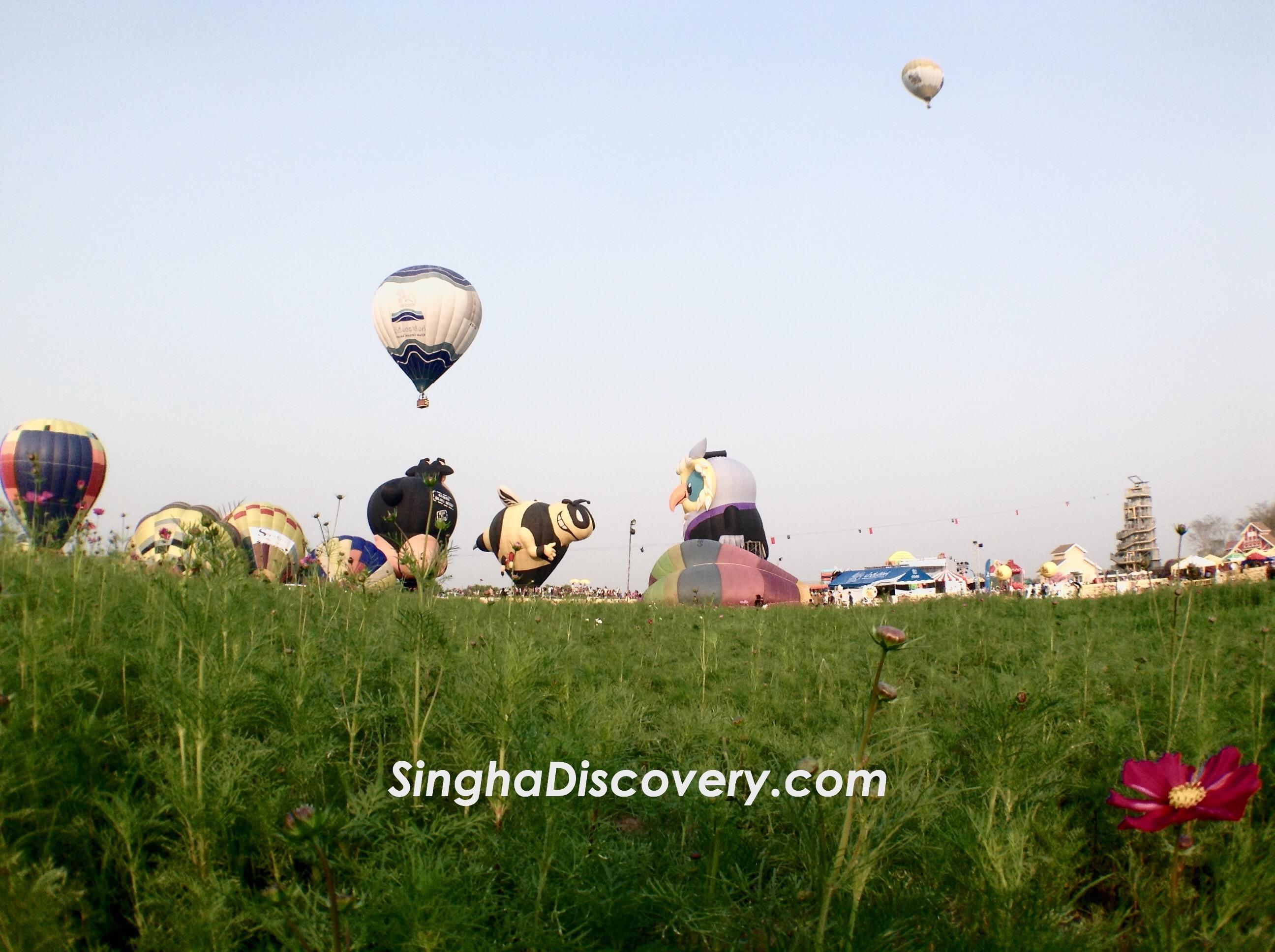 Singha Balloon  Fiesta
